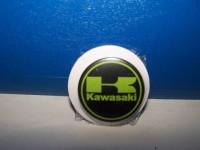 Odznak Kawasaki